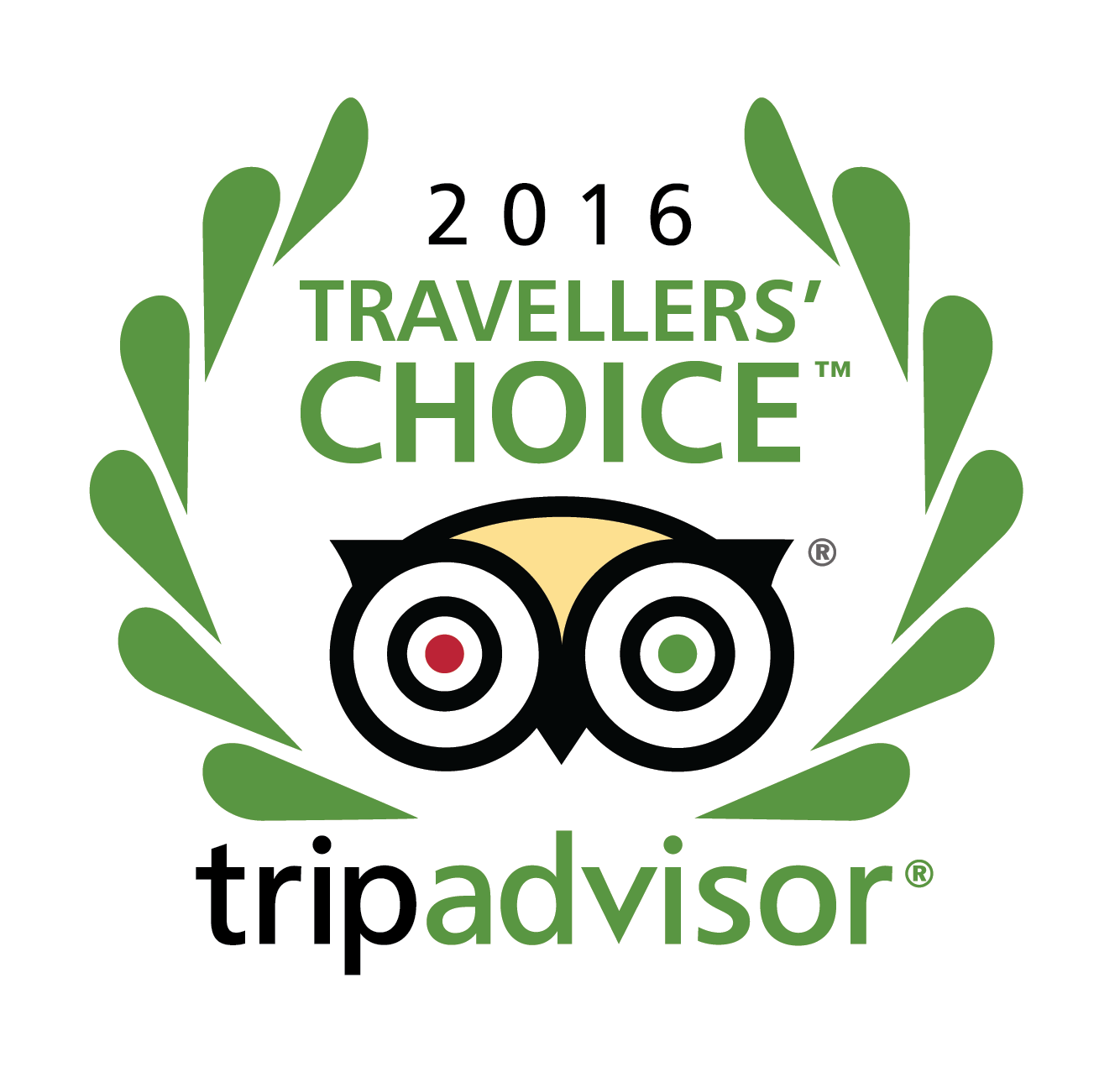 Trip Advisor Travelers' Choice Badge for the Blue Turtle Hotel