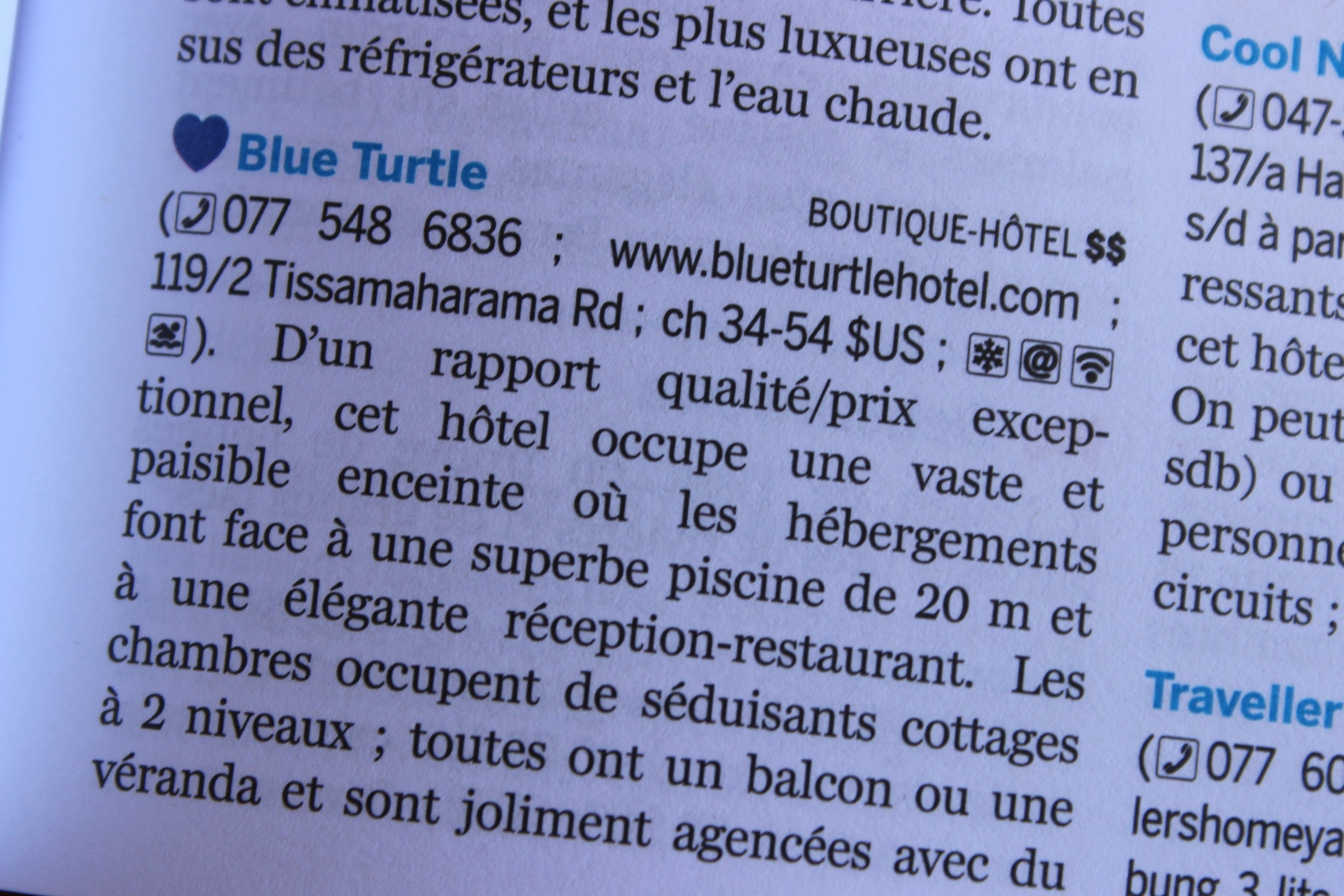 Blue Turtle Hotel Review
